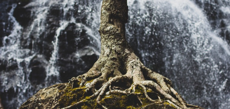 Finding the Root of a Stronghold